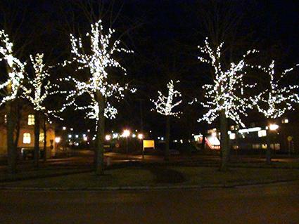 Höörs Försköningsförening står bakom julutsmyckningen av träden på Gamla Torg.